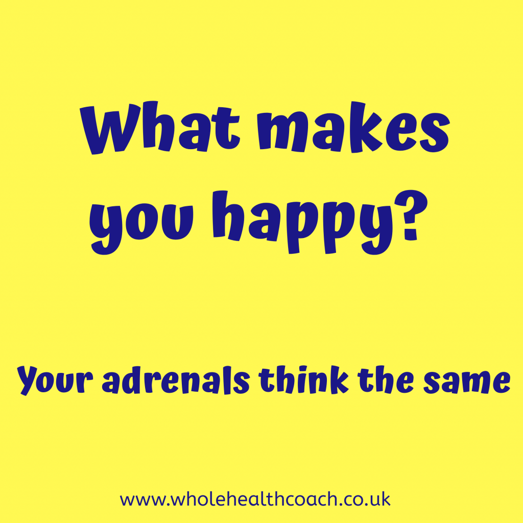 Adrenal series 2 – Happy Adrenal Glands